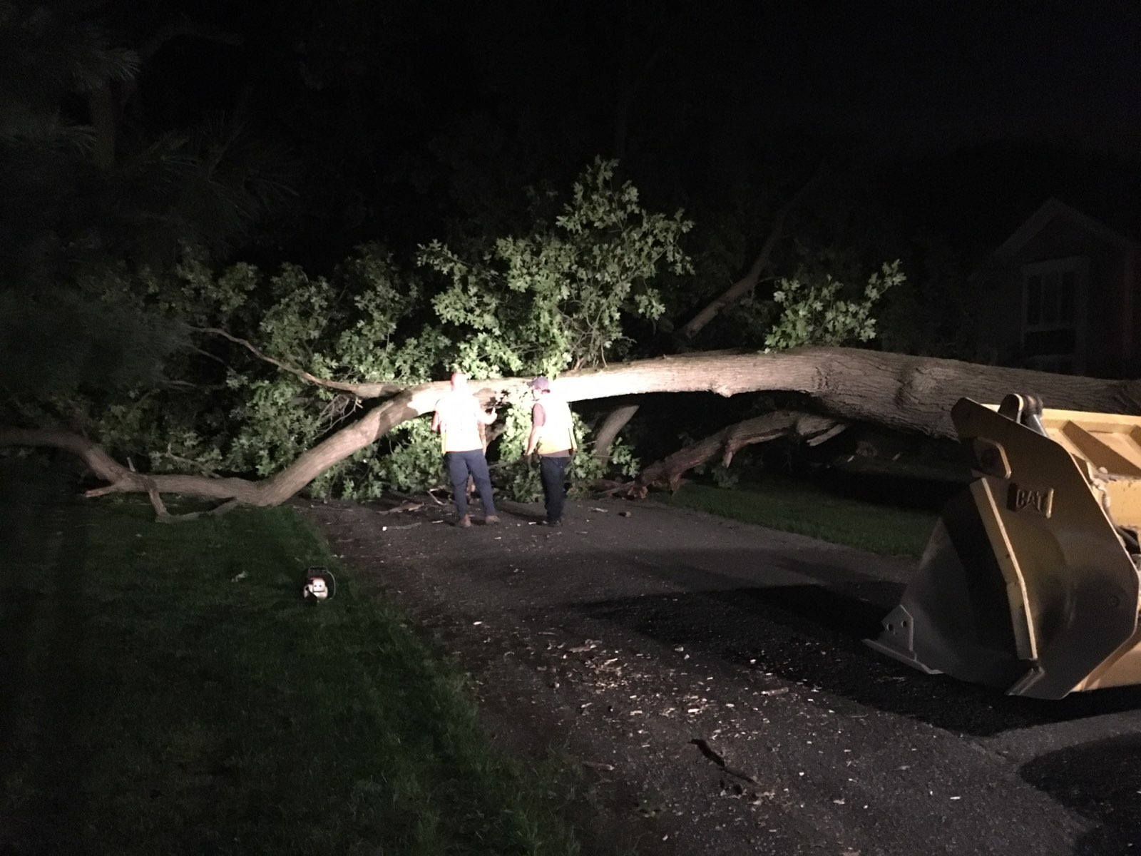 Giant tree down on Evergreen Rd in Granger prompts VEST to block off the road while county crews arrive with needed apparatus